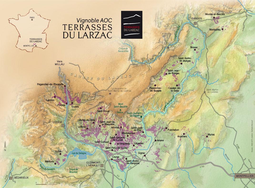Vignoble AOC - Terrasses du Larzac